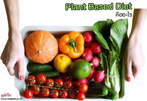 Plant Based Diet คืออะไร สำนักพิมพ์แม่บ้าน
