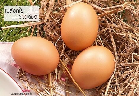 เปลือกไข่ ช่วยไล่มด สำนักพิมพ์แม่บ้าน