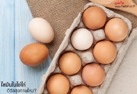 ไขมันในไข่ไก่ ดีต่อสุขภาพไหม? สำนักพิมพ์แม่บ้าน