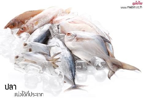 ปลา แบ่งได้กี่ประเภท สำนักพิมพ์แม่บ้าน