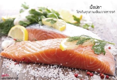 เนื้อปลา โปรตีนคุณภาพเยี่ยมจากสวรรค์ สำนักพิมพ์แม่บ้าน