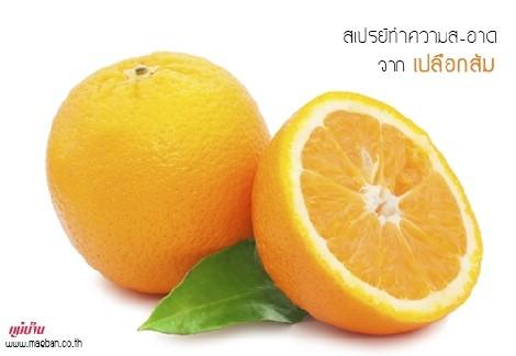 สเปรย์ทำความสะอาด จากเปลือกส้ม สำนักพิมพ์แม่บ้าน
