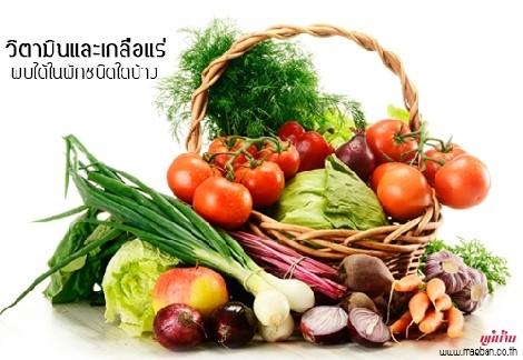 วิตามินและเกลือแร่ พบได้ในผักชนิดใดบ้าง สำนักพิมพ์แม่บ้าน