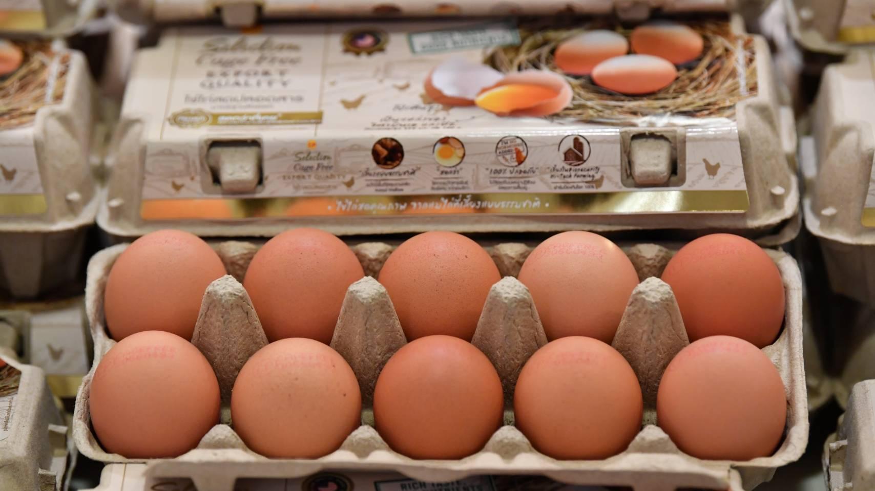 ซีพีเอฟ หนุนรัฐเร่งส่งออกไข่ระบายส่วนเกิน สร้างเสถียรภาพราคาในประเทศช่วยเกษตรกร สำนักพิมพ์แม่บ้าน