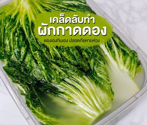 เคล็ดลับทำผักกาดดอง ดองเองกินเอง ปลอดภัยหายห่วง สำนักพิมพ์แม่บ้าน