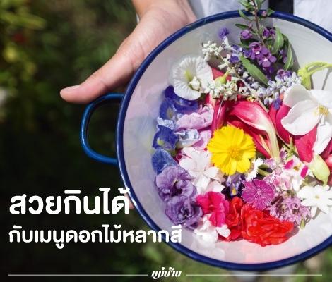 สวยกินได้ กับเมนูดอกไม้หลากสี สำนักพิมพ์แม่บ้าน