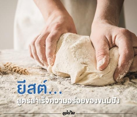 ยีสต์... สูตรสำเร็จความอร่อยของขนมปัง สำนักพิมพ์แม่บ้าน