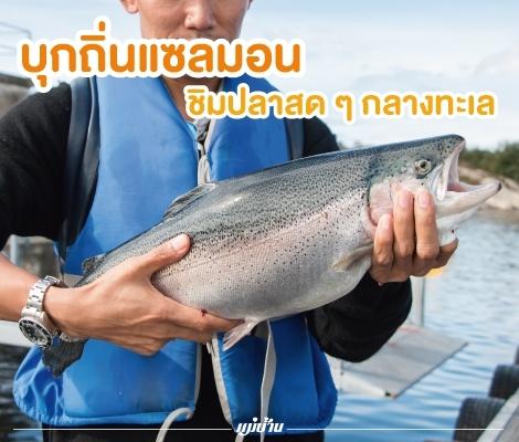[Norway] บุกถิ่นแซลมอน ชิมปลาสด ๆ กลางทะเล  สำนักพิมพ์แม่บ้าน