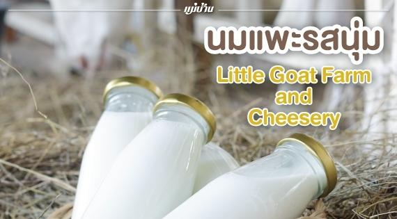 นมแพะรสนุ่ม ๆ จาก Little Goat Farm and Cheesery สำนักพิมพ์แม่บ้าน