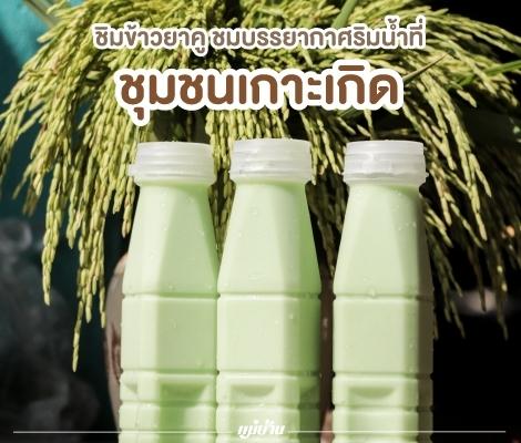 """ชิมข้าวยาคู ชมบรรยากาศริมน้ำที่ """"ชุมชนเกาะเกิด"""" สำนักพิมพ์แม่บ้าน"""