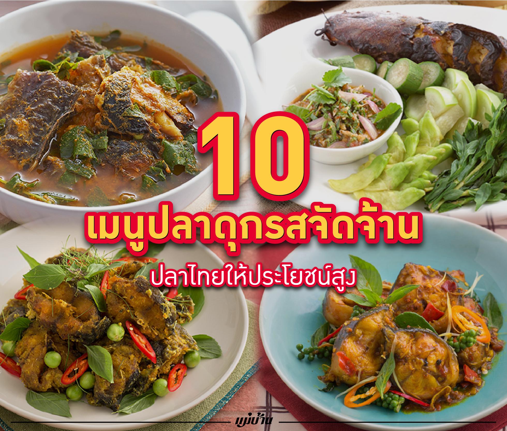 10 เมนูปลาดุกรสจัดจ้าน ปลาไทยให้ประโยชน์สูง สำนักพิมพ์แม่บ้าน