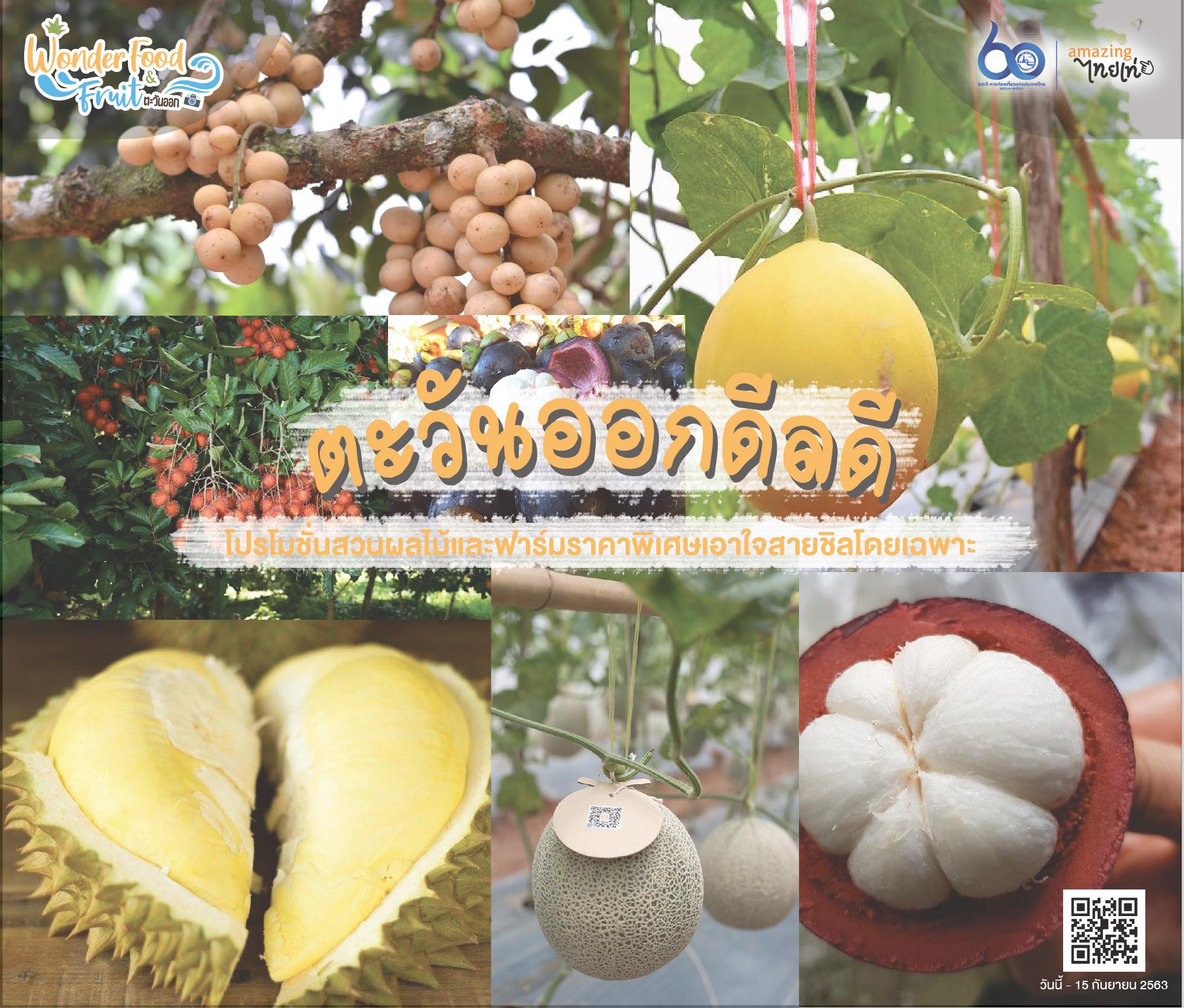 ตะวันออกดีลดี!! โปรโมชั่นสวนผลไม้และฟาร์มราคาพิเศษเอาใจสายชิลโดยเฉพาะ สำนักพิมพ์แม่บ้าน